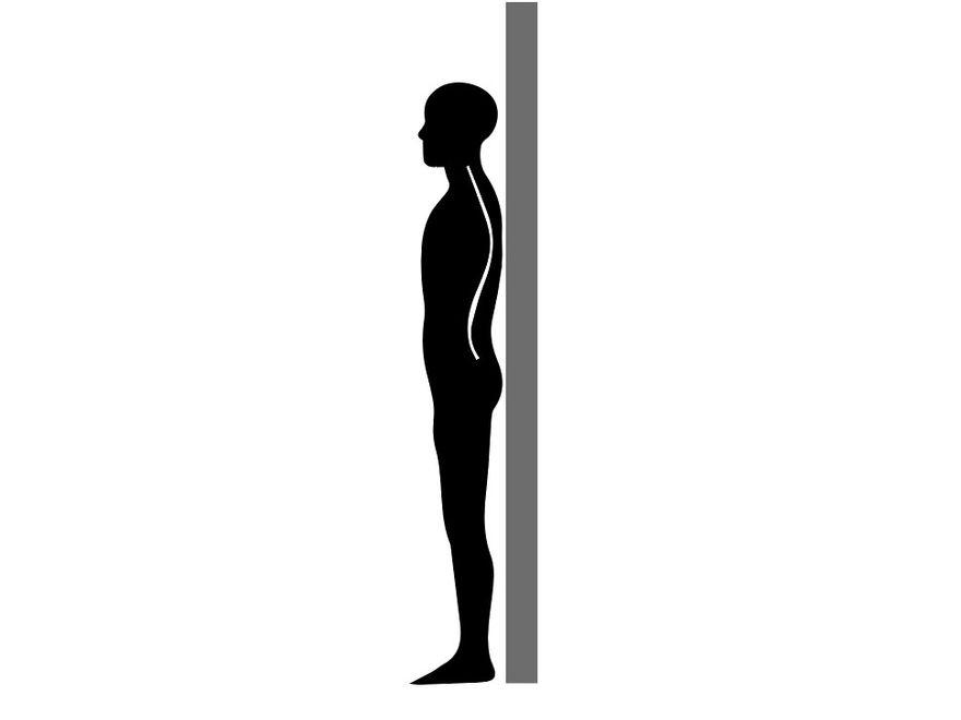 Reseteo de postura